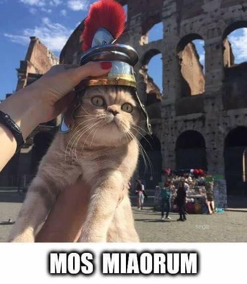 Mos miaorum